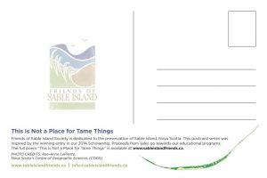 SableIsland-Postcard-back